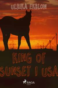King of Sunset i USA af Ulrika Ekblom