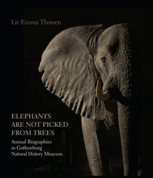 Elephants are not picked from trees af Liv Emma Thorsen